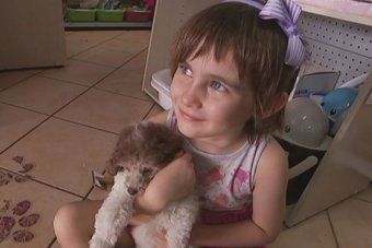 Four-year-old daughter Rosie Johns takes part in a treatment trial to cure her fear of dogs.