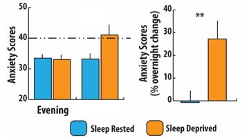 Chronically anxious? Deep sleep may take the edge off
