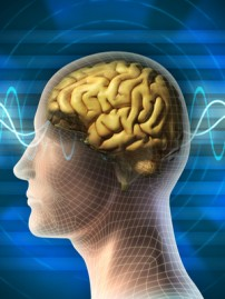 Focused Ultrasound May Ease OCD Symptoms