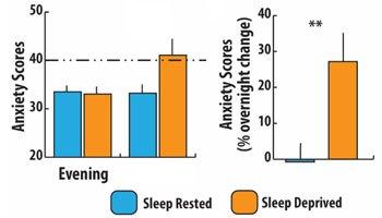 Chronically anxious? Deep sleep may take the edge off